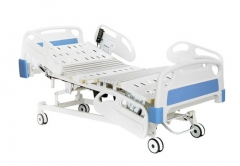 Five Function Electric Care Bed
