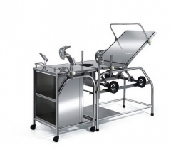 Stainless Steel Delivery Table