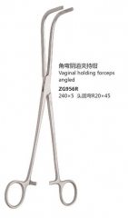 Vaginal holding forceps